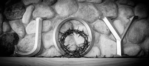 Crown Of Thorns-0006