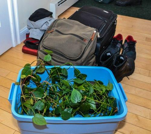 Josh-s Luggage-0005