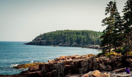 Acadia-246-2