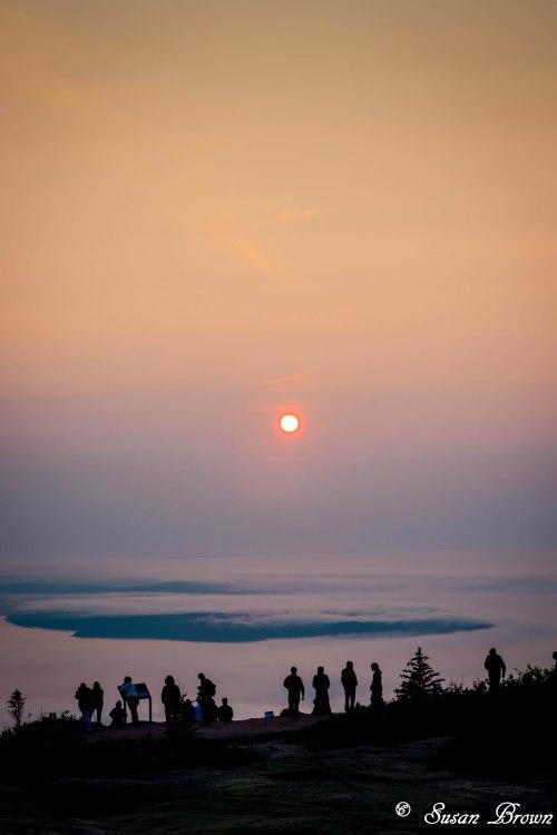 Acadia-291
